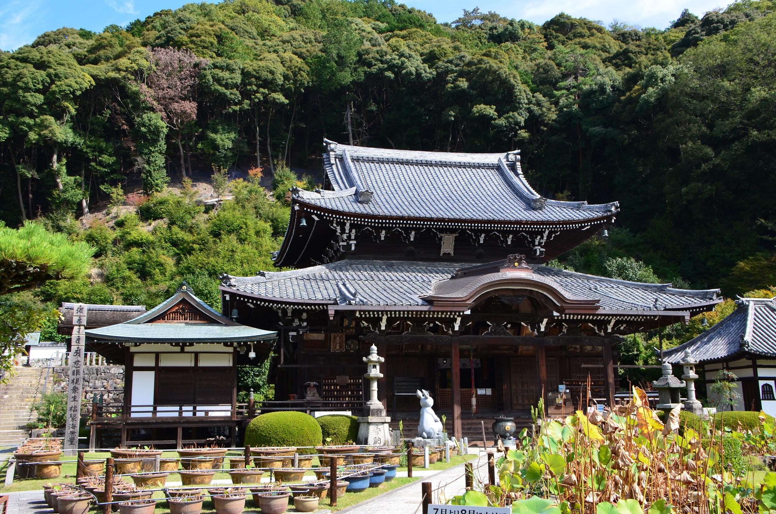 京都三室戸寺