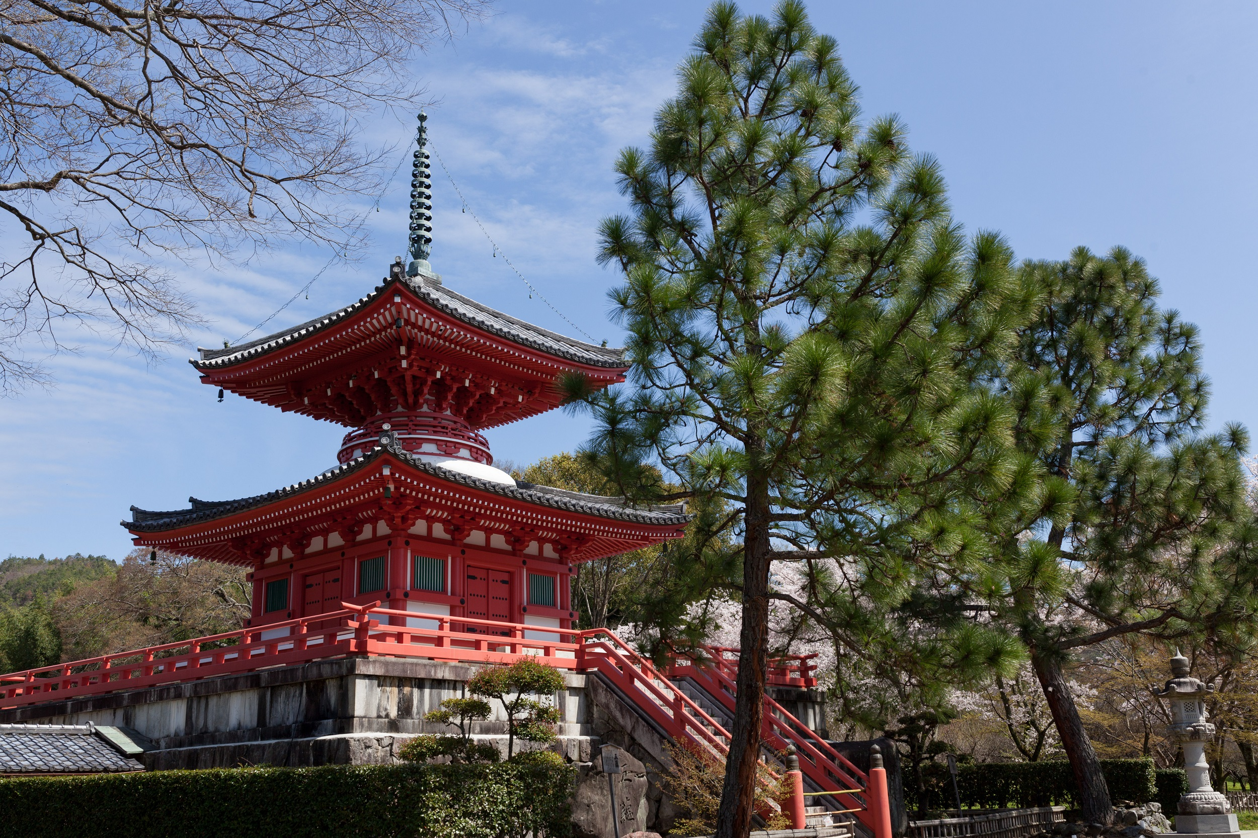 京都大覚寺