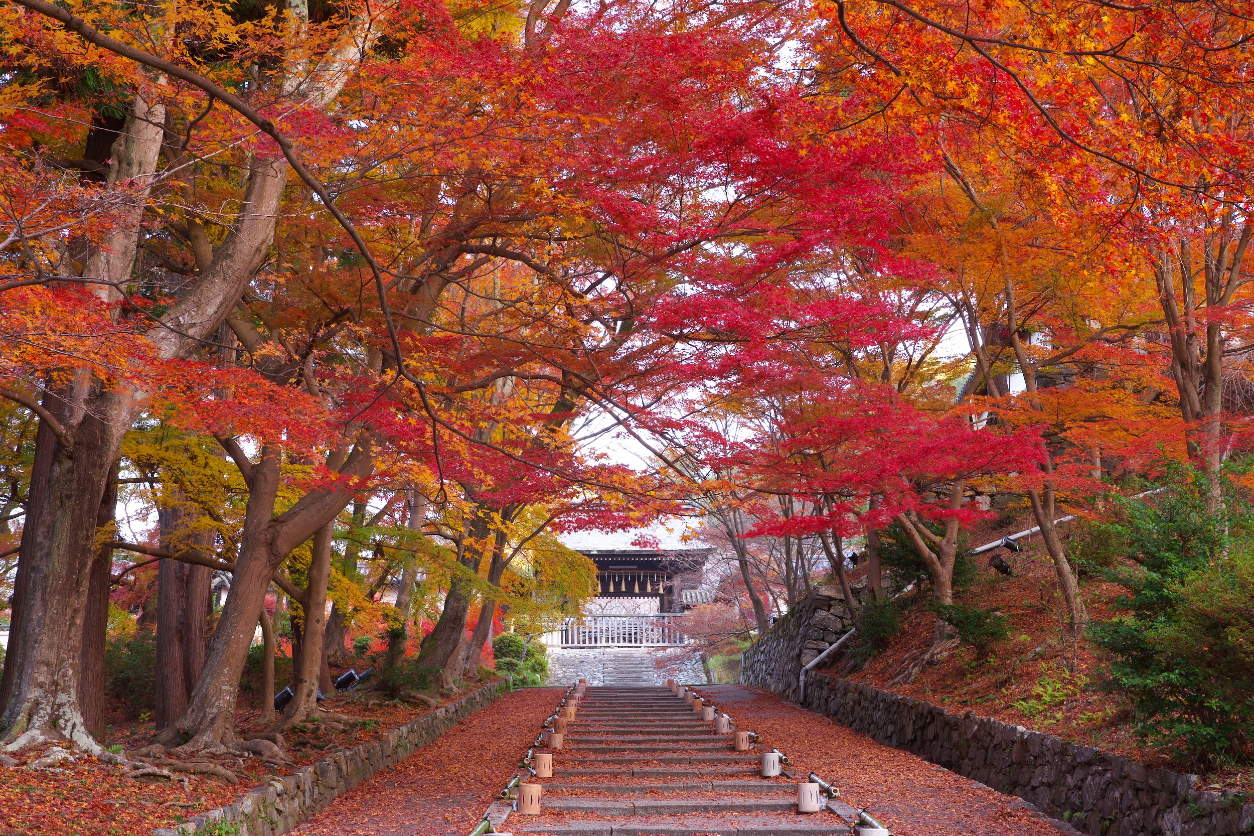 京都毘沙門堂門跡