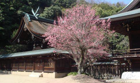 岡山吉備津彦神社