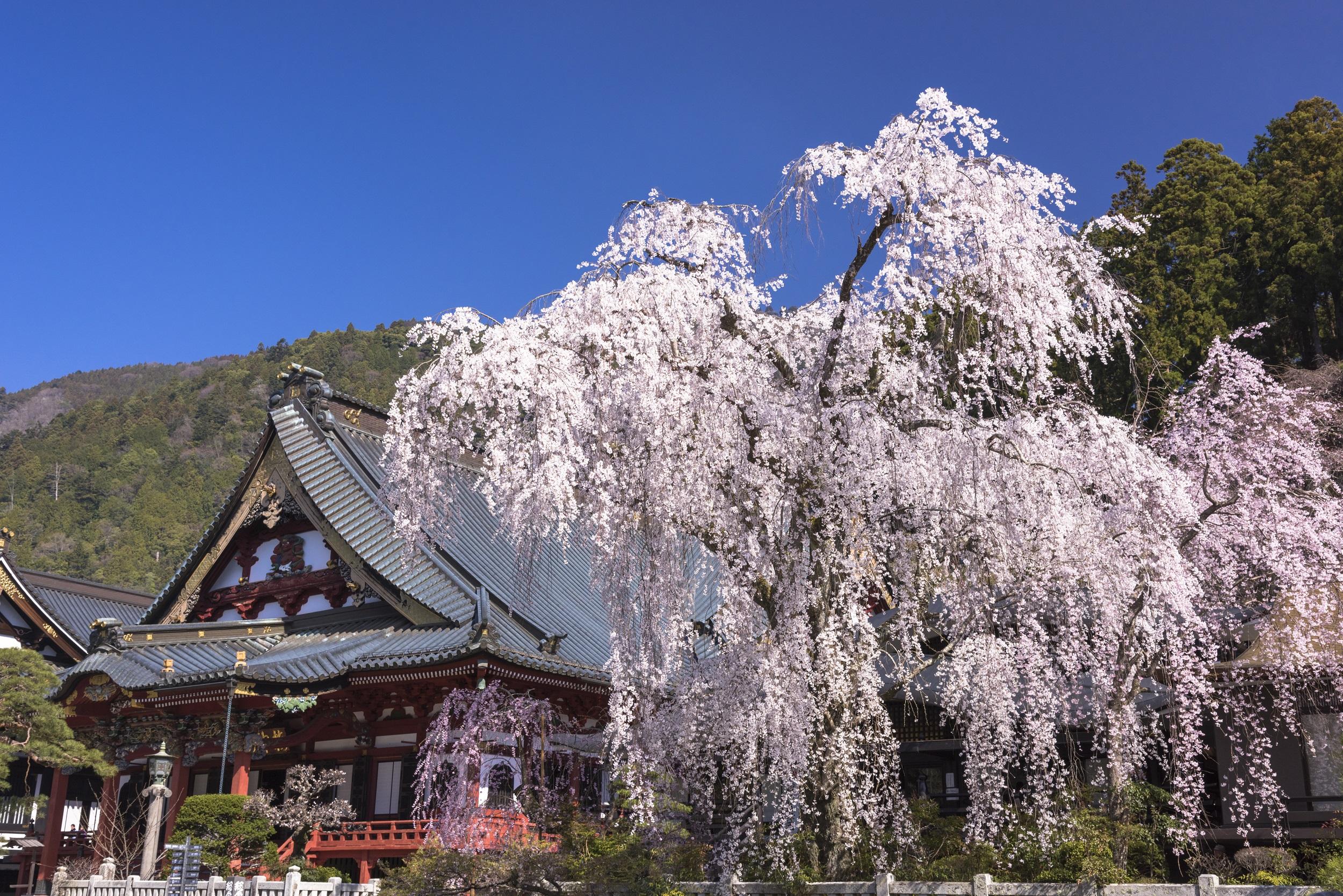 山梨久遠寺